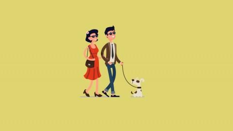 Consejos para contratar un seguro para mascotas