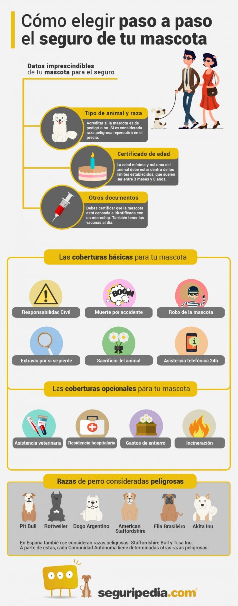 Infografía cómo elegir seguro de mascota